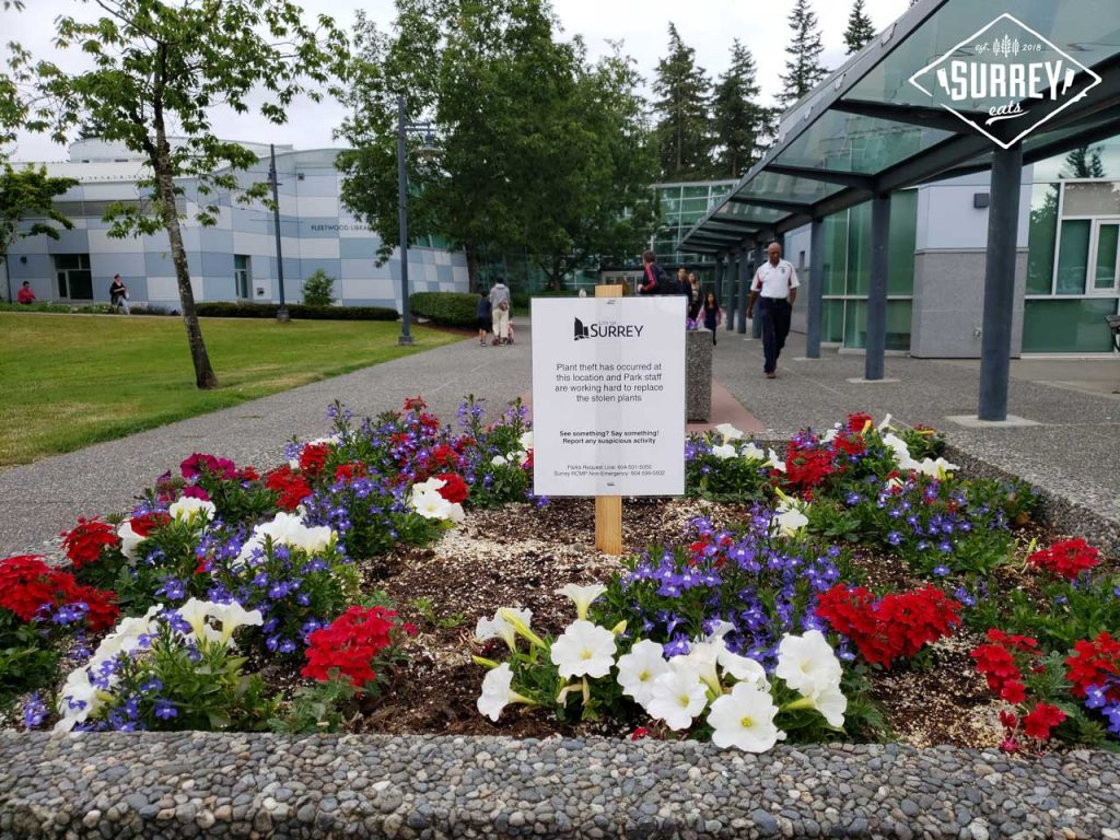 """A sign at the Fleetwood Community Center in a small garden area reads: """"Plant theft has occurred at this location and Park staff are working hard to replace the stolen plants"""""""