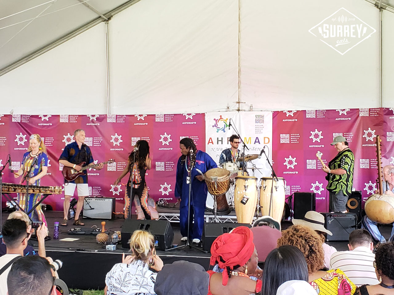 An African musical troupe performing at Surrey's Fusion Festival 2019