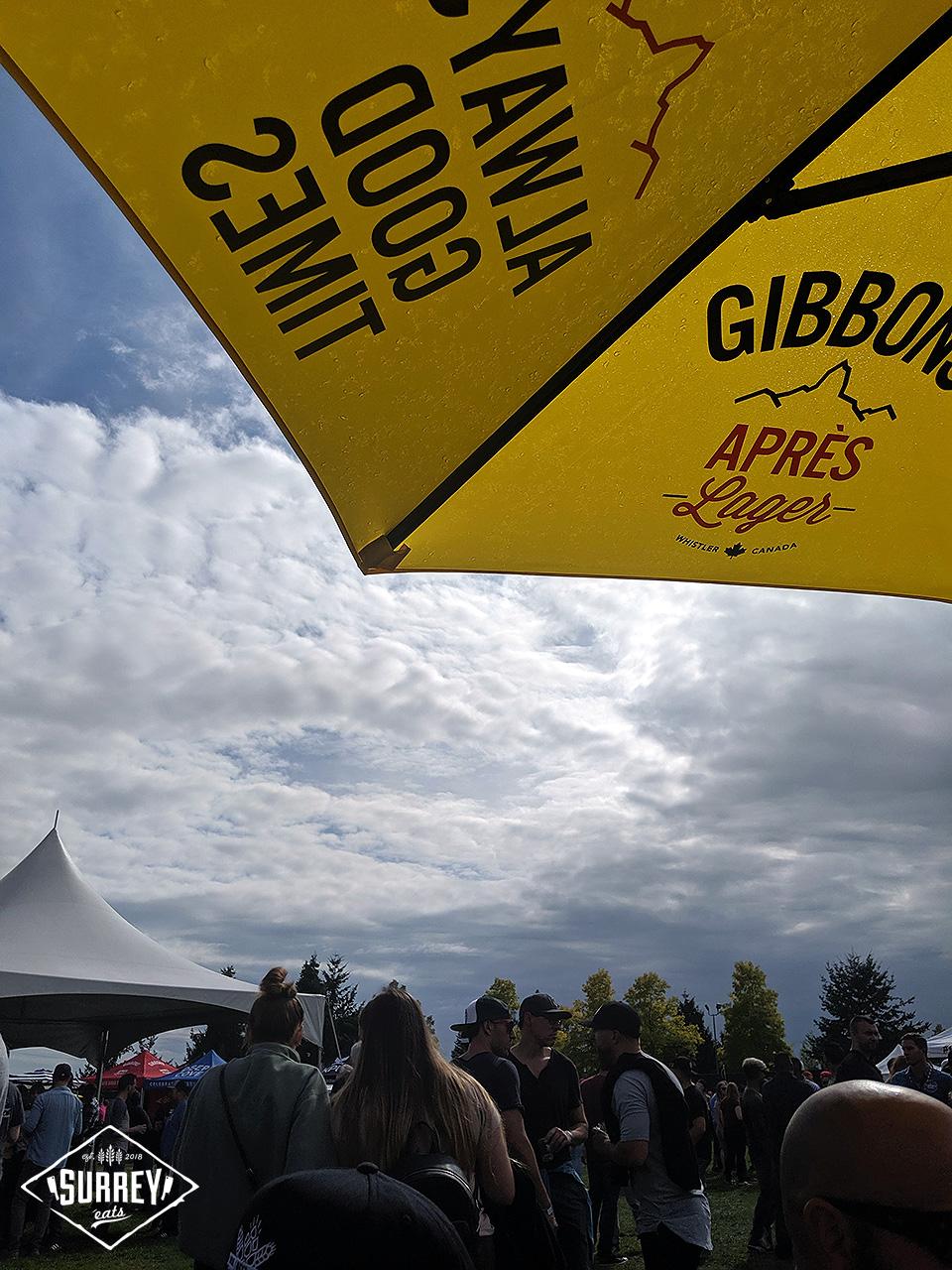 Crowd Clover Valley Beer Festival