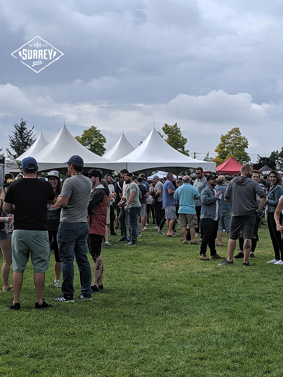 People Gathering On Grass at Clover Valley Beer Festival