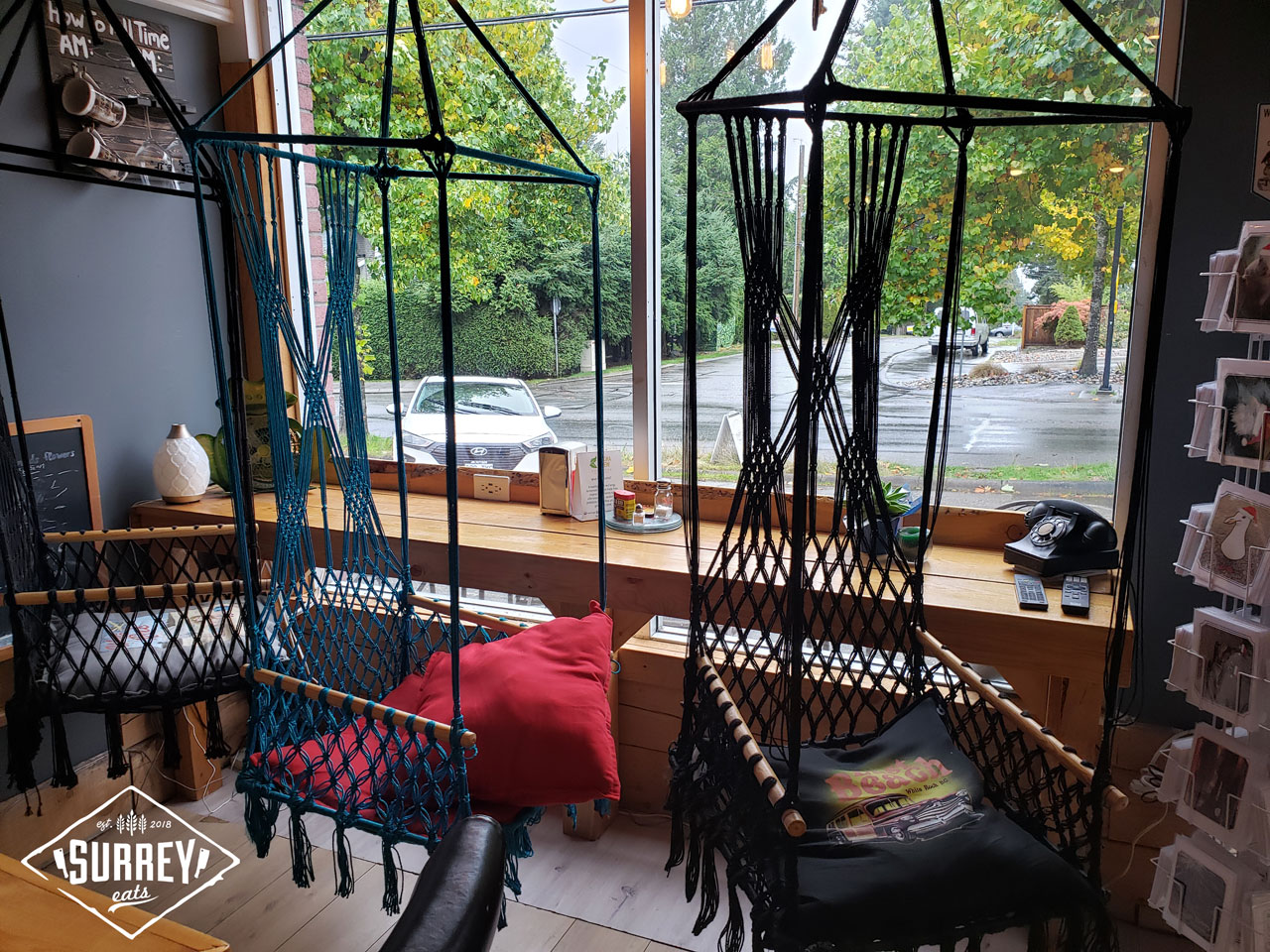 Hammock-like chairs hang from the ceiling inside Dudes Coffee House with a view outside through the window